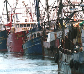 New Bedford MA fishing boats, AC DC motor service, stainless steel motor repair, generators, pumps, Boston MA, Cape Cod